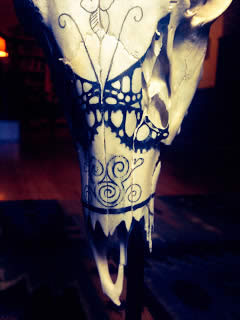 a painted animal skull