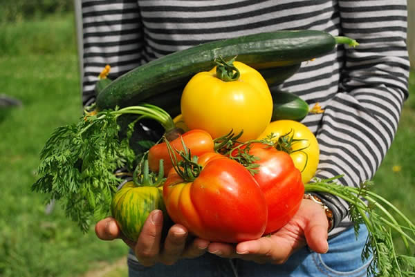 a woman holding a variety of fresh vegetables