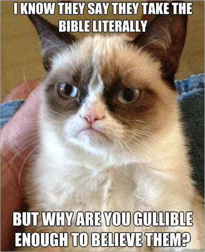 grumpy cat bible literally