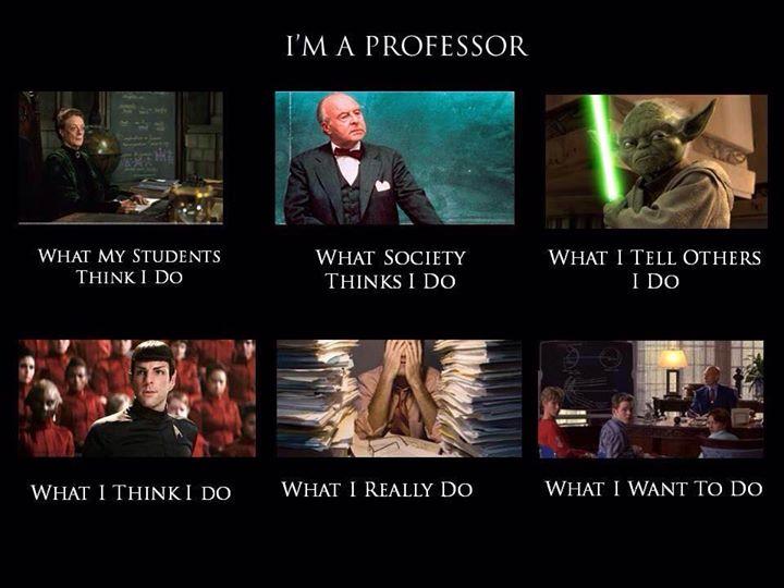 what do professors do