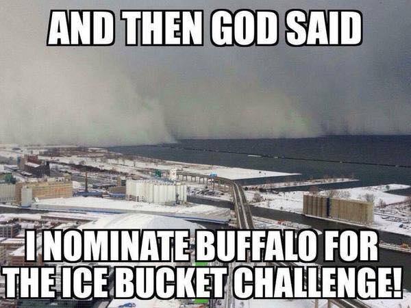 Buffalo ice bucket