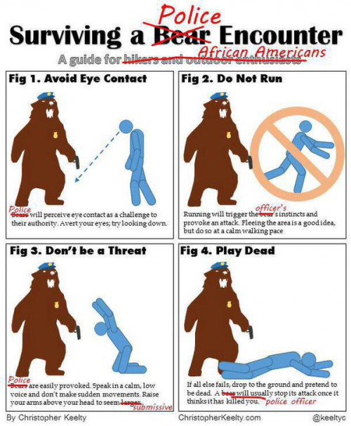 Bears and Police