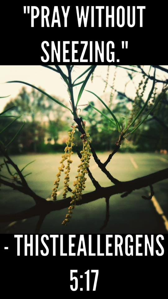 Pray without Sneezing