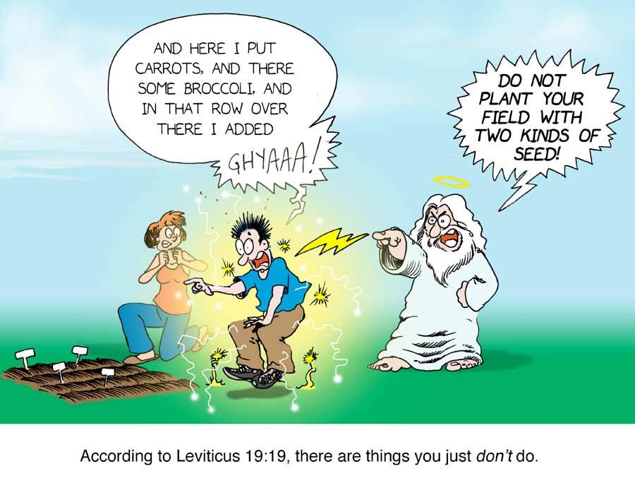 Leviticus19