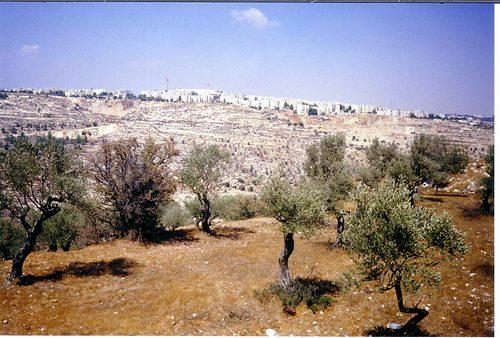 photo credit: Palestine_Jerusalem_al-Walaja_NK27716 via photopin (license)