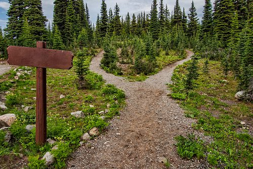 photo credit: You Choose Your Path via photopin (license)