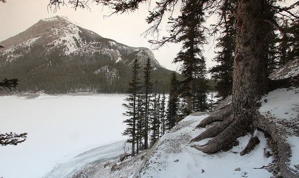 Kananaskis Country, one of the general filming locations of The Revenant