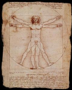 vitruvian-man-da vinci-1490-hylomorphism-form-matter