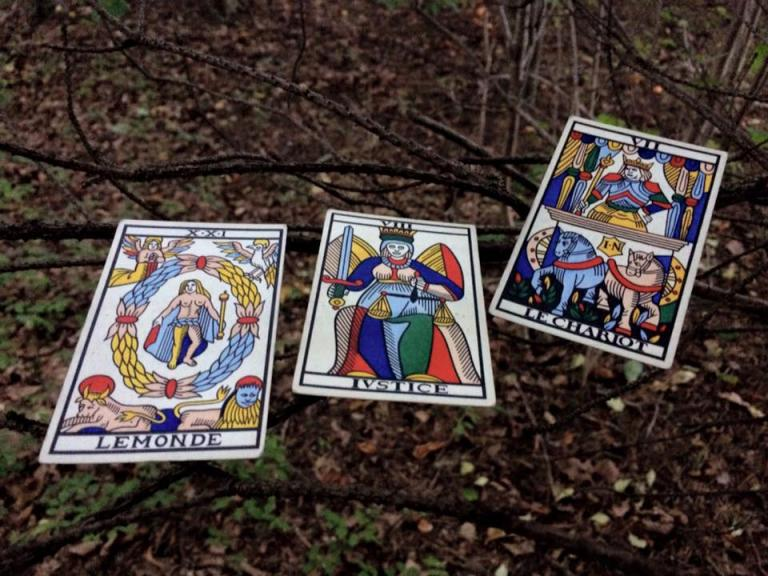 Three tarot cards arranged on the branches of a low bush