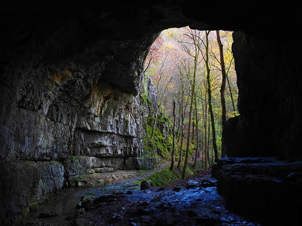 a photograph of a cave's entrance from within the cave
