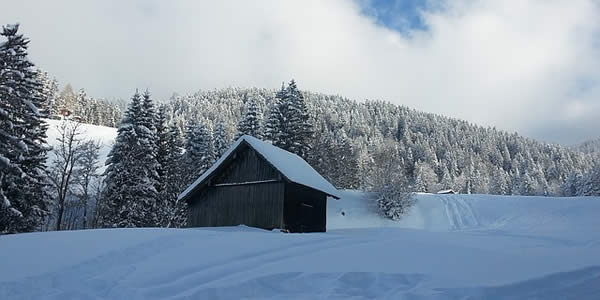 a cabin in a snow covered field