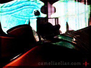 Photo: Camelia Elias