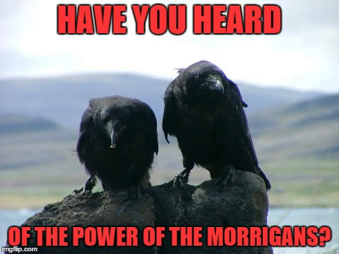 "two ravens perched on a rock with the text ""Have you heard the power of the morrigan?"""