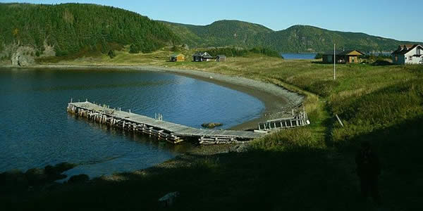 a small bay with a pier and some modern houses in a remote, forested area of Canada
