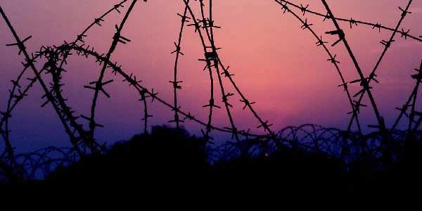 a photograph of barbed wire in front of a sunrise