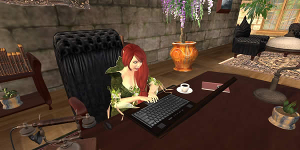 a screen shot of the author's Second Life avatar seated at a desk using a laptop