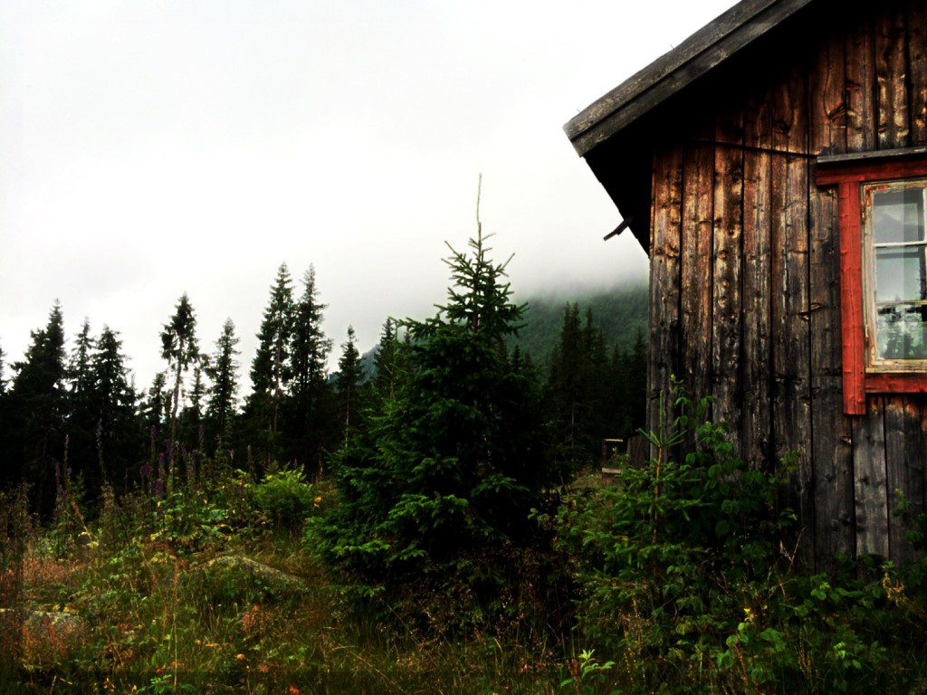 a small, rustic building on a forested hillside under cloudy skies