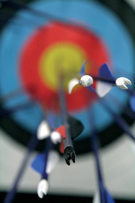 a photograph of arrows shot into an archery target