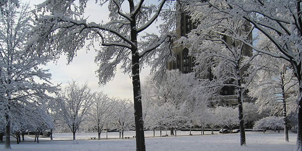 a photograph of the outside of a cathedral during winter