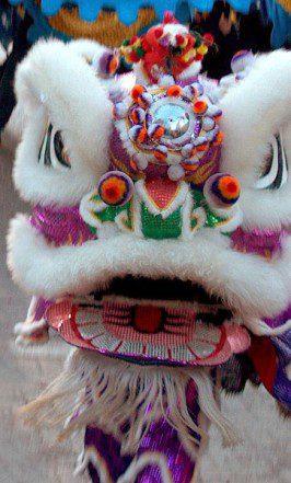 a close-up photograph of a lion costume