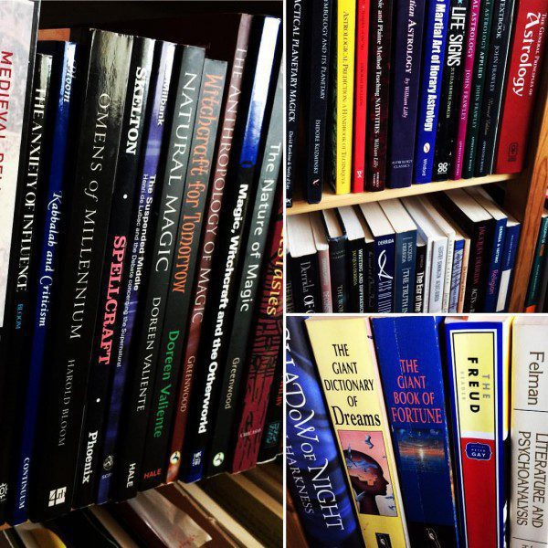 a photograph of the author's book collection