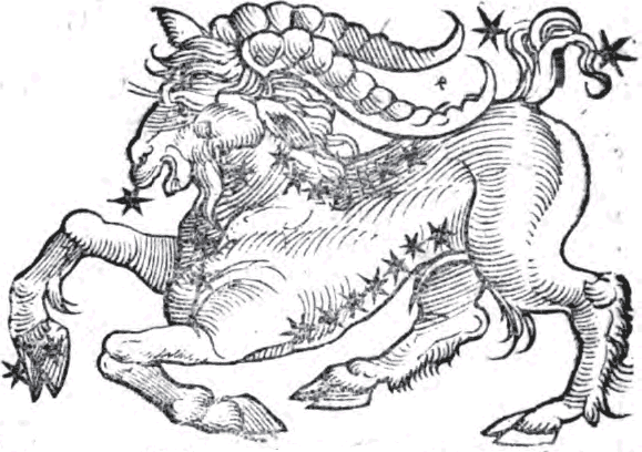 "Capricorn the Goat, from Guido Bonatti ""Liber Astronomiae"" from WikiMedia."