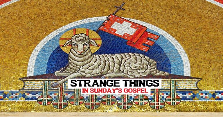 Strange Things from Sunday's Gospel