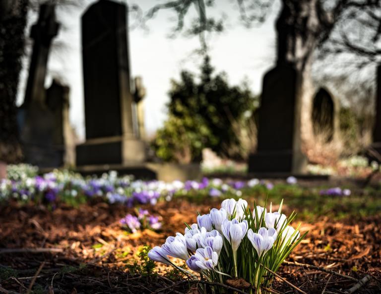 "<a href=""https://pixabay.com/photos/graveyard-church-crocus-cemetery-1417871/"">Image</a> by <a href=""https://pixabay.com/users/drippycat-1944641/?utm_source=link-attribution&utm_medium=referral&utm_campaign=image&utm_content=1417871"">drippycat</a> from <a href=""https://pixabay.com/?utm_source=link-attribution&utm_medium=referral&utm_campaign=image&utm_content=1417871"">Pixabay</a>"
