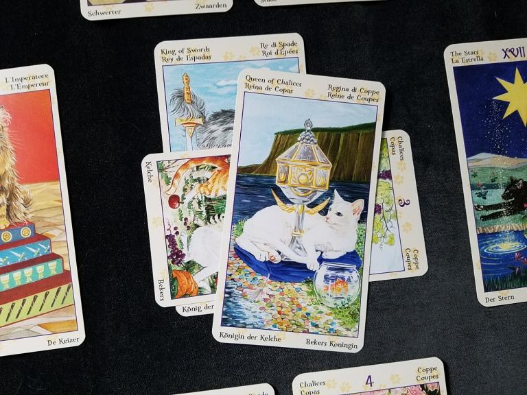 "Core cards are the King of Swords, crossed with the 3 of Cups, topped with the Queen of Cups. Deck is the <a href=""https://www.llewellyn.com/product.php?ean=9780738726700"">Tarot of Pagan Cats</a>."