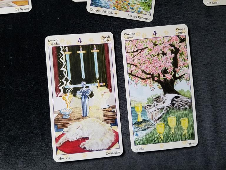 """Emotion cards are the 4 of Swords for current approach, and 4 of cups for advice. Deck is the <a href=""""https://www.llewellyn.com/product.php?ean=9780738726700"""">Tarot of Pagan Cats</a>."""