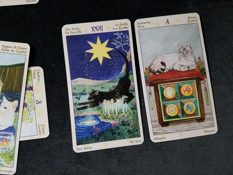 "Physical cards are The Star for current approach, and 4 of Pentacles for advice. Deck is the <a href=""https://www.llewellyn.com/product.php?ean=9780738726700"">Tarot of Pagan Cats</a>."