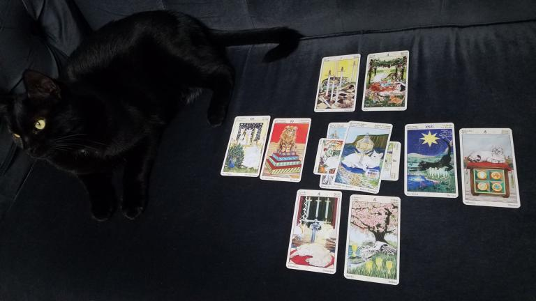 "Thanatos was surveying the spread for accuracy. Deck is the <a href=""https://www.llewellyn.com/product.php?ean=9780738726700"">Tarot of Pagan Cats</a>."