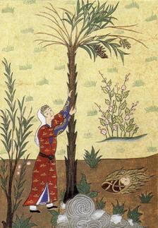 MARYAM By Anonymous (TURKEY) [Public domain], via Wikimedia Commons