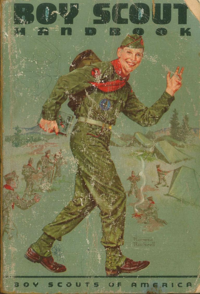 Boy Scouts and the Banishment of Boys | Fr  Dwight Longenecker
