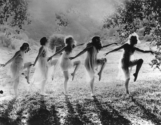 backlit faeries