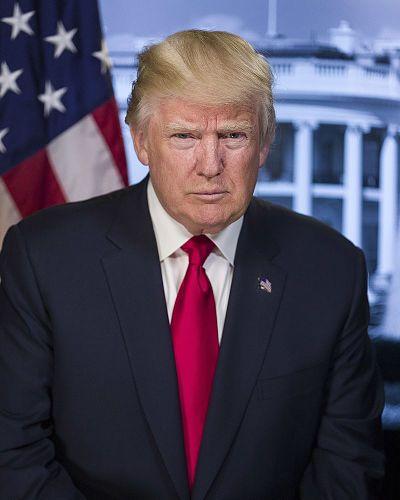 Donald_Trump_official_portrait_opt