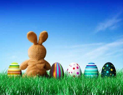 easter_eggs_bunny_resized