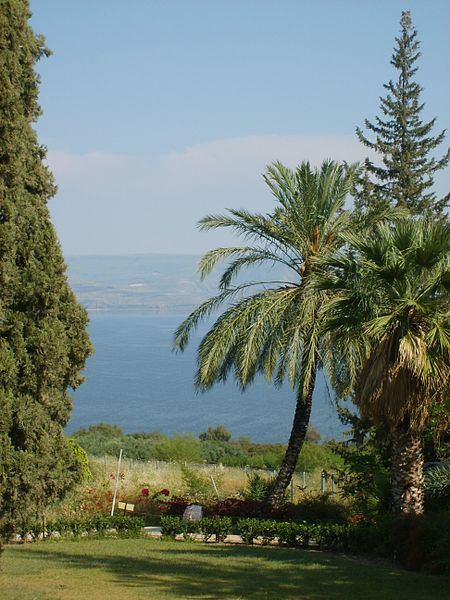 From the Mount of Beatitudes across Kinnereth, with palm trees
