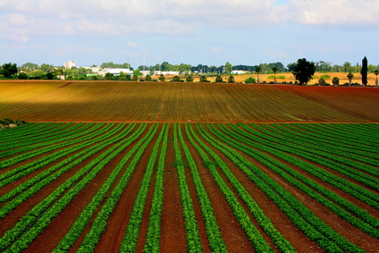 Israel has become an agricultural powerhouse.