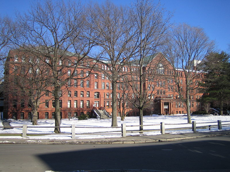 At Harvard on a sunny winter's day