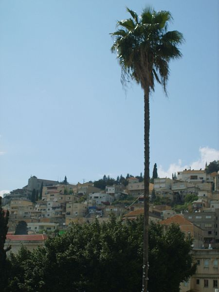 A hillside in Nazareth