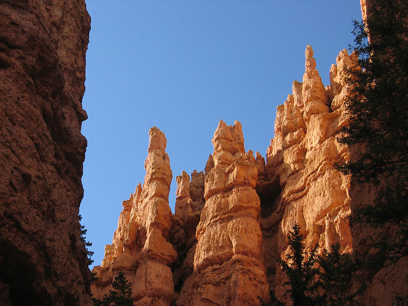 In Bryce Canyon