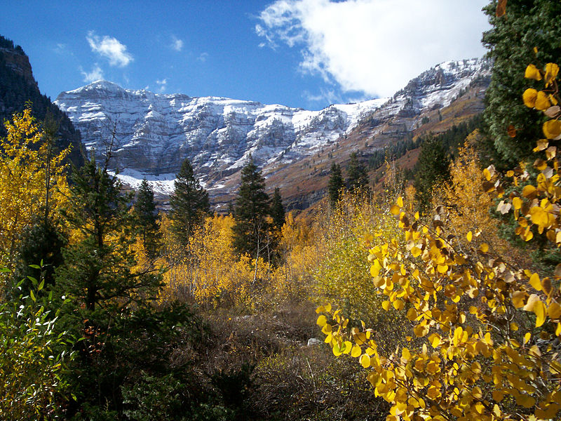 Timp, from the east