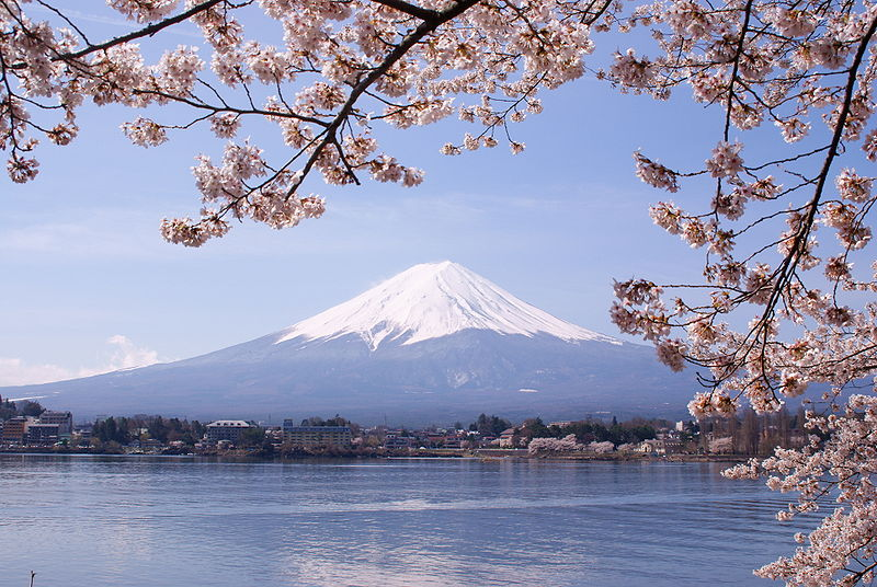 Fuji-san with lake and cherry blossoms