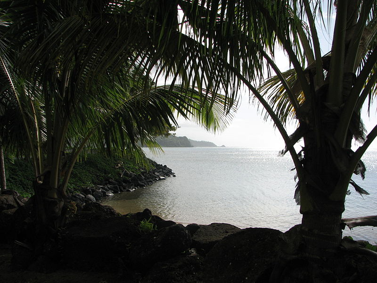 A landscape in Samoa