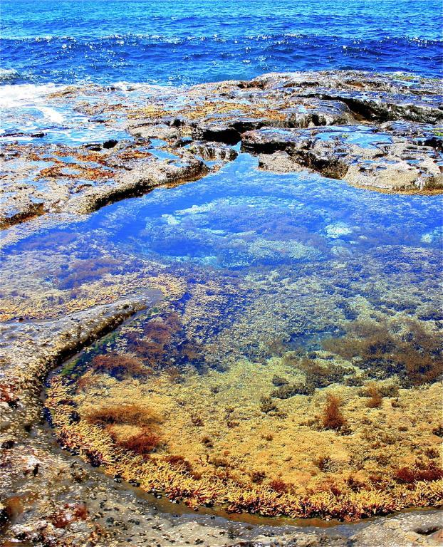 Australian tidal pool
