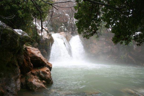 In south Lebanon