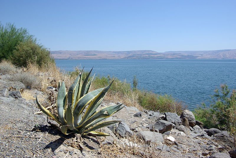 Capernaum view of Kinneret