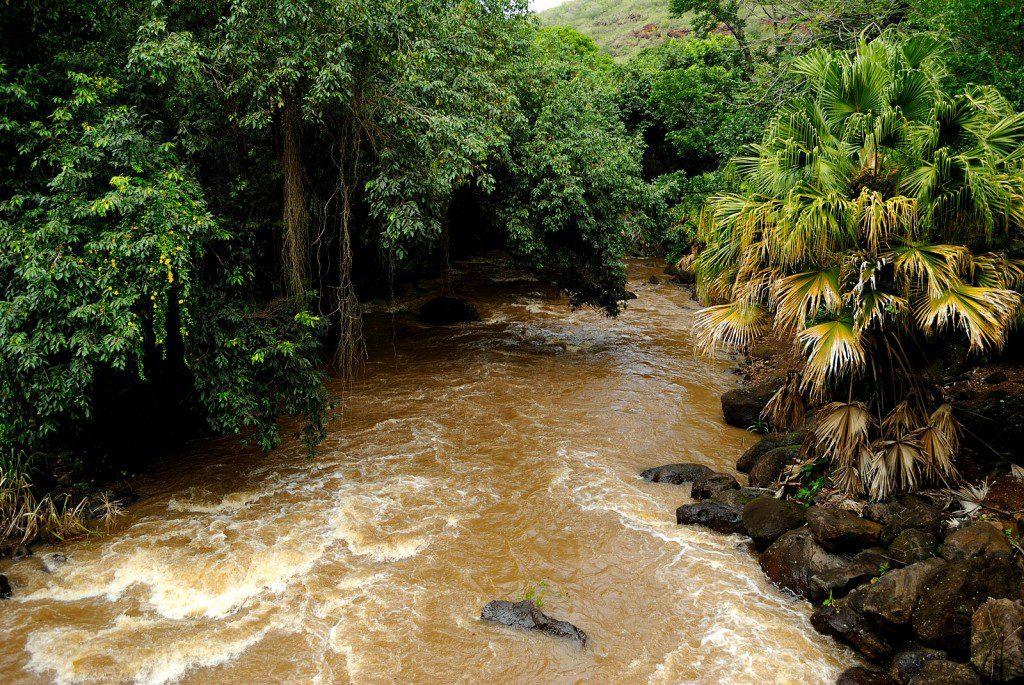 Kamananui Stream, Waimea, Oahu, Hawaii, USA