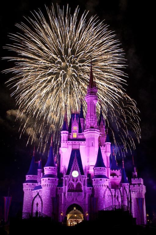 Disney World and the Big Bang